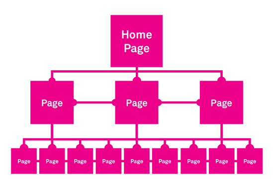 Coexisting-Structure-Website-Information-Architecture-Graphic-1-1024x705