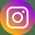 social-instagram-seagull